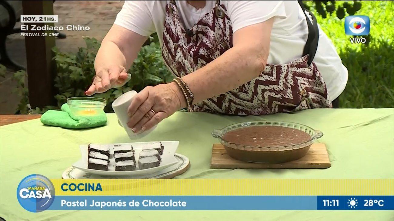 Pastel japonés de chocolate