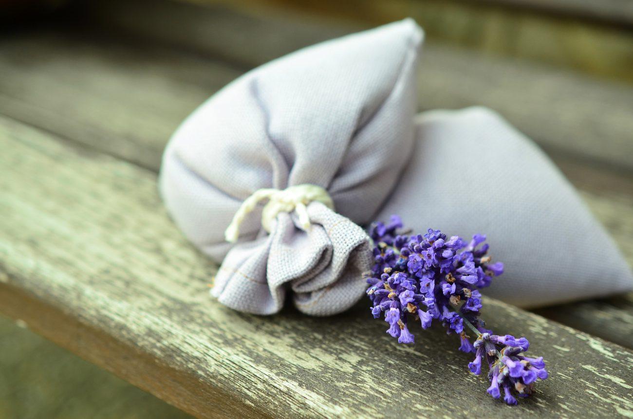 lavender-823584_1920